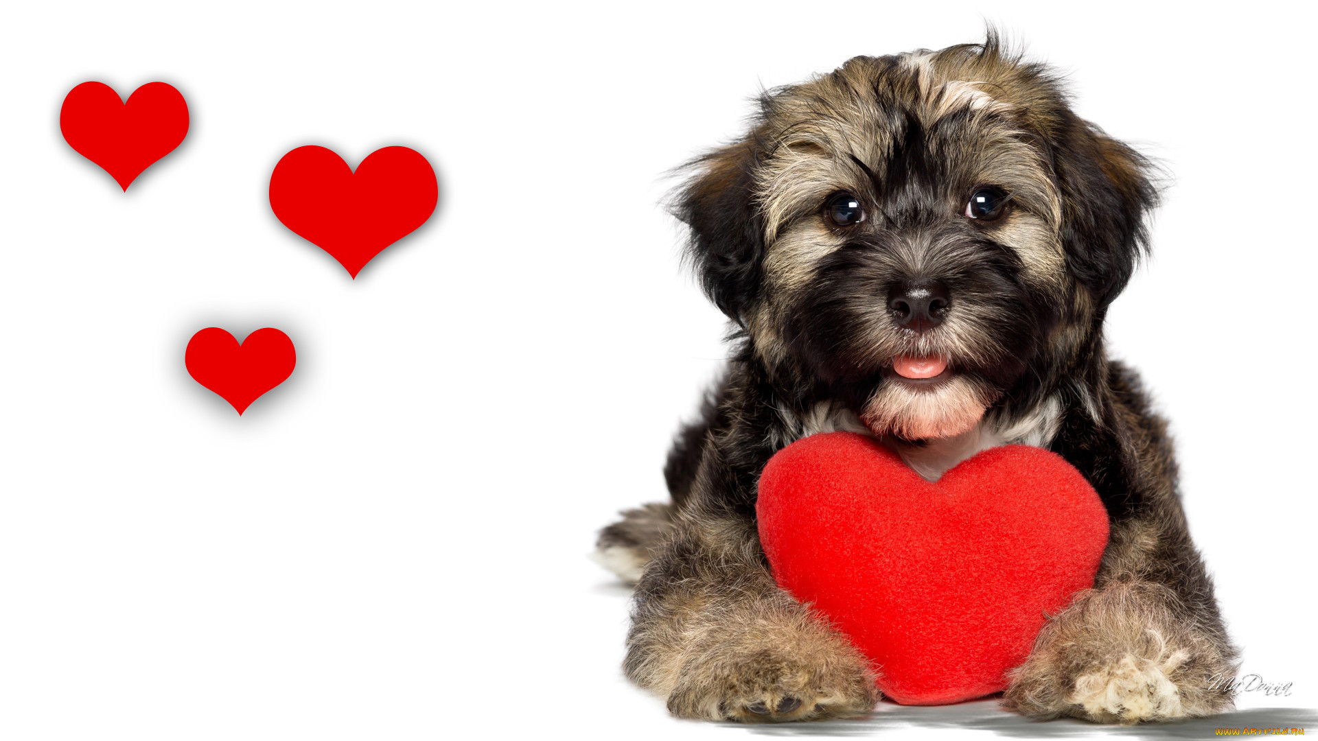 Картинки собаки с сердечками